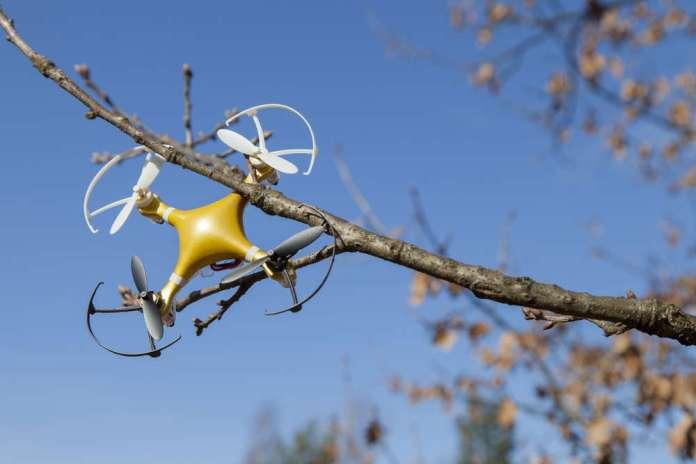 drone stuck in tree