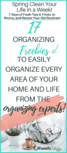 Life can be crazy and organizing your life and home can easily fall by the wayside. Get tips, tricks, and hacks from 17 organizational experts for FREE. Each of these resources will help you clean and organize your home, your family, your finances, your health, your family meals, and even plan your family vacations! #Freebies #Resources