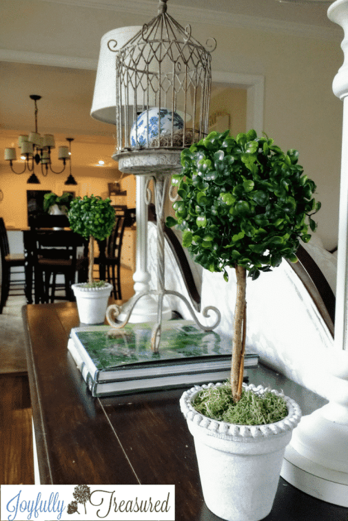 boxwood topiary DIY
