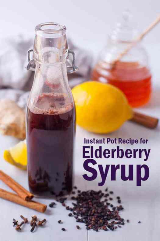 elderberry syrup instant pot