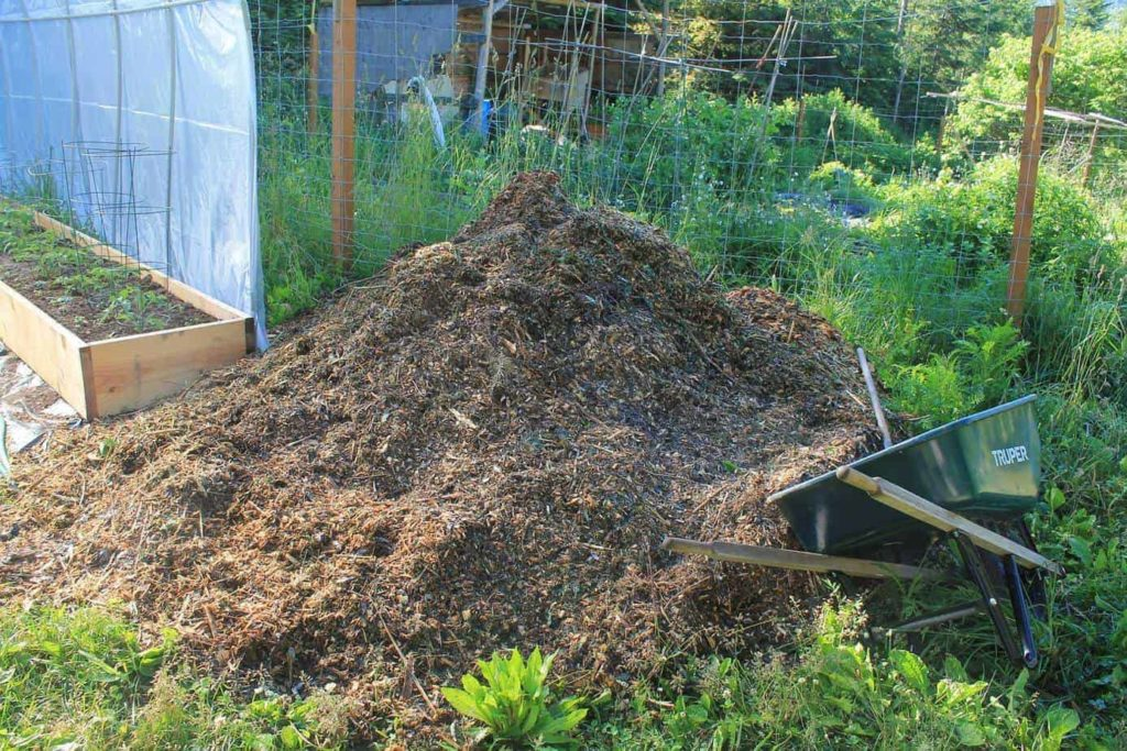 Best Mulch Vegetable Garden