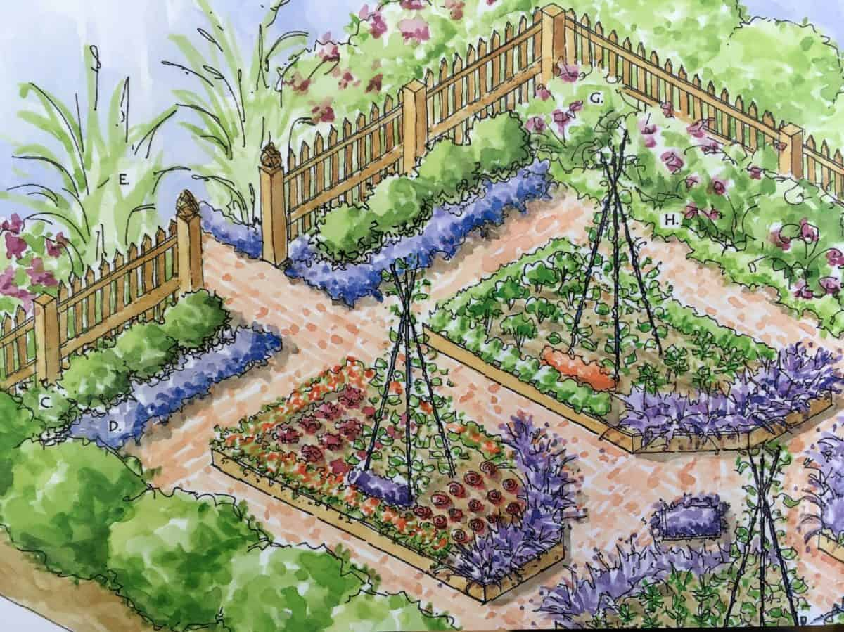 Kitchen Garden Designs, Plans + Layouts 2020 | Family Food ... on Garden Patio Designs And Layouts id=15041