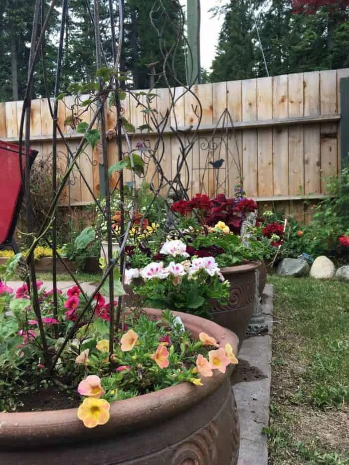 Small Backyard Garden Ideas & Tips   Family Food Garden on Backyard Garden Ideas id=55939