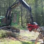 logging-demonstration