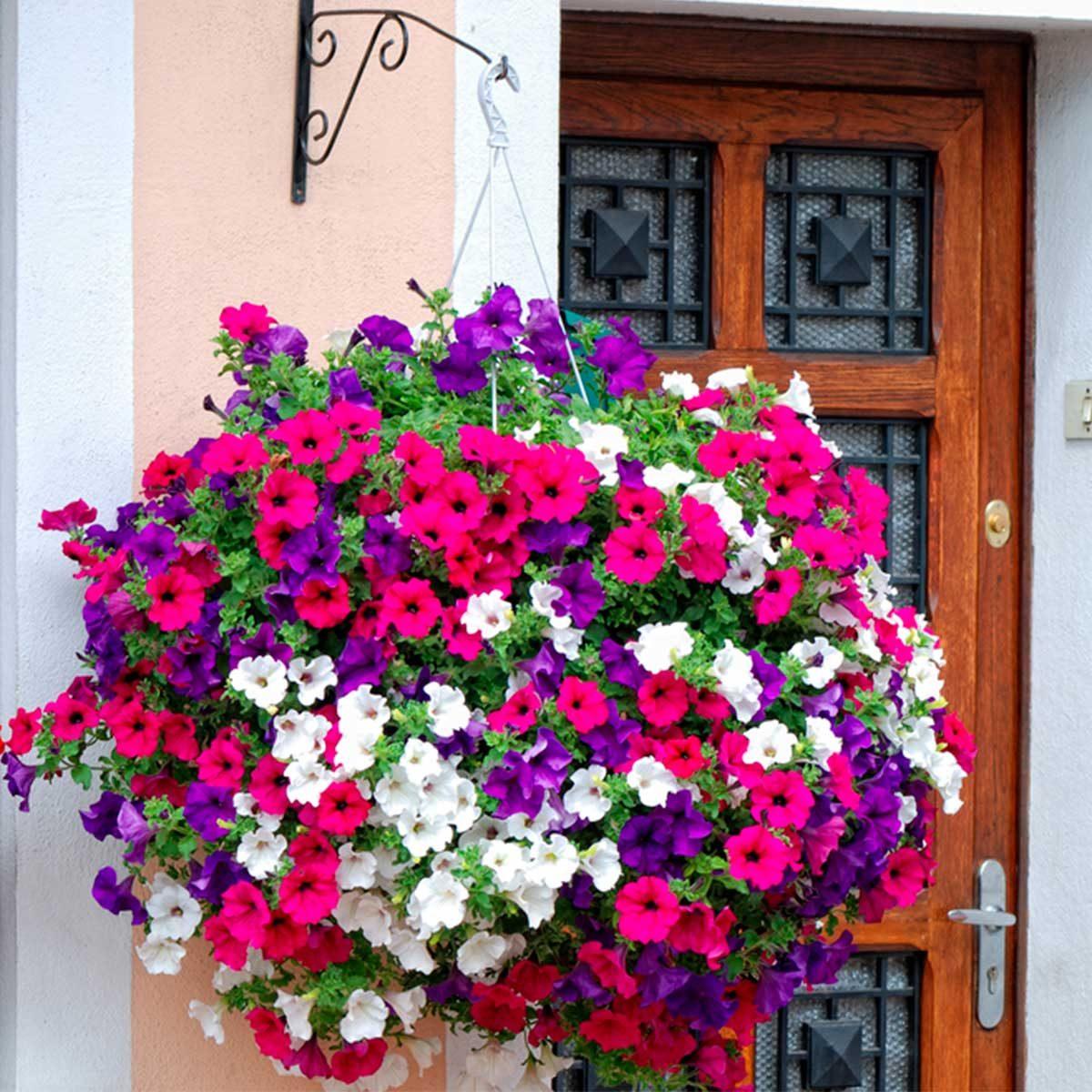 Creative Hanging Planter Ideas   Family Handyman on Plant Hanging Ideas  id=21559
