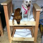 14 Adorable Diy Dog Beds The Family Handyman