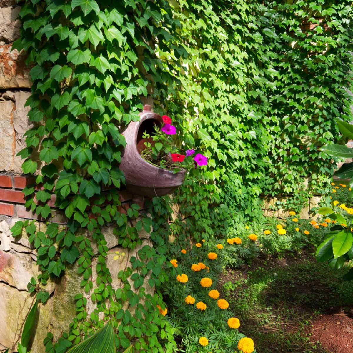 14 Small-Space Landscaping Ideas — The Family Handyman on Landscape Design Small Area id=83812