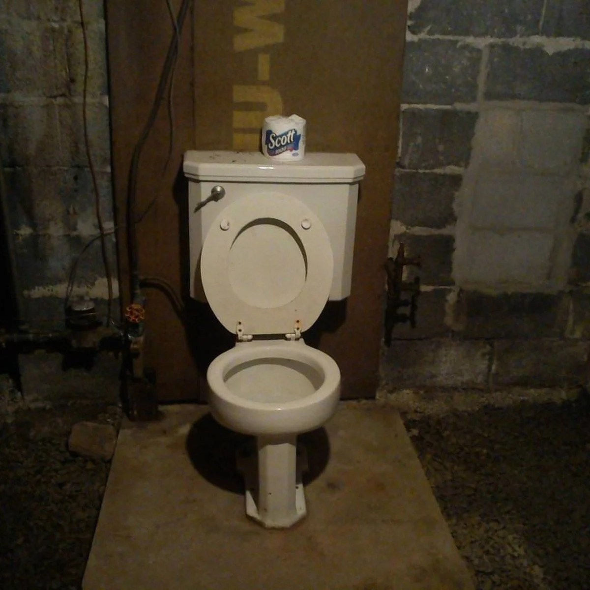 Here S Why Old Houses Have Random Toilets In The Basement