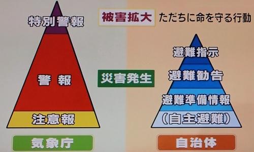 tokubetsukeihou-605-7