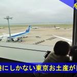 羽田空港にしかない東京お土産が目白押し!