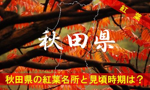 kouyou-aki-2052