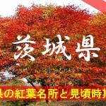 茨城県の気になる紅葉名所と見頃時期は?