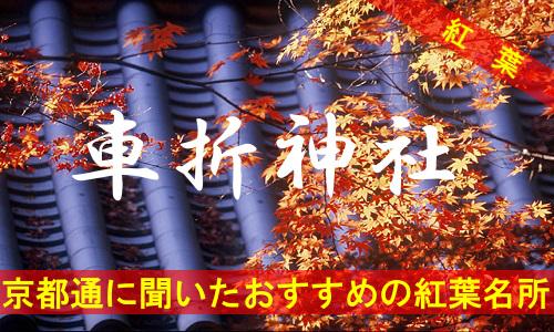 kouyou-kyouto-kurumazaki-2617