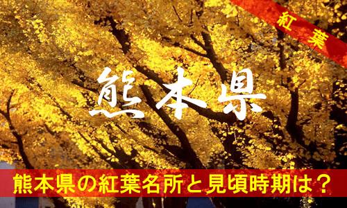 kouyou-ku-3148