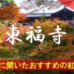 京都通に聞いたおすすめの紅葉名所《東福寺》