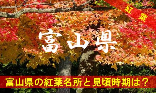 kouyou-to-3-2992