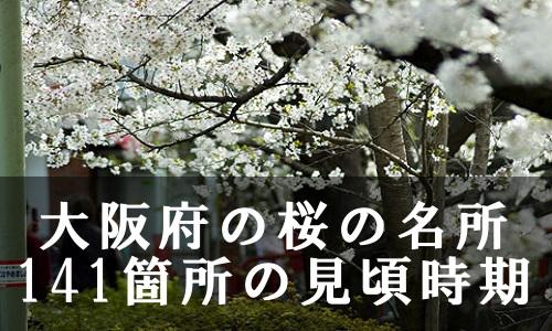sakura-21-6759