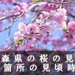青森県の弘前公園など桜の名所25箇所の見頃時期