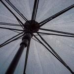 2016年の東海の梅雨入りと梅雨明け時期の予想は?(静岡県、岐阜県、三重県、愛知県)