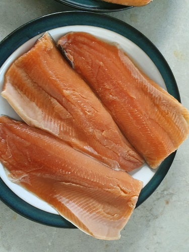 Dried, brined trout on a plate waiting to be smoked