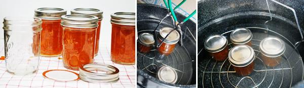 Homemade Peach Jam by FamilySpice.com