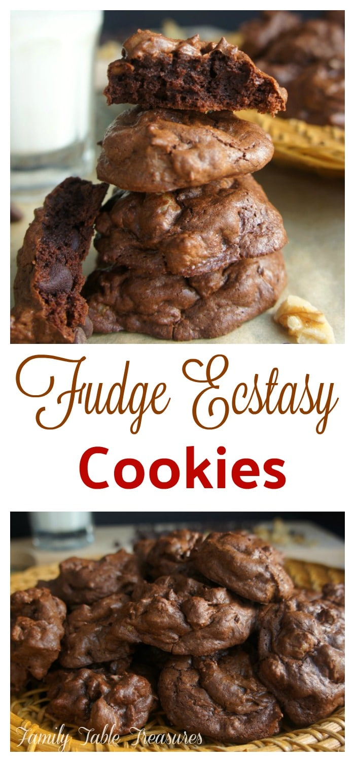 {Fudge} Ecstasy {Cookies}