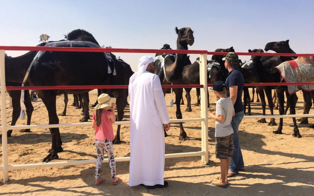 Al Dhafra Festival personal guide for western families