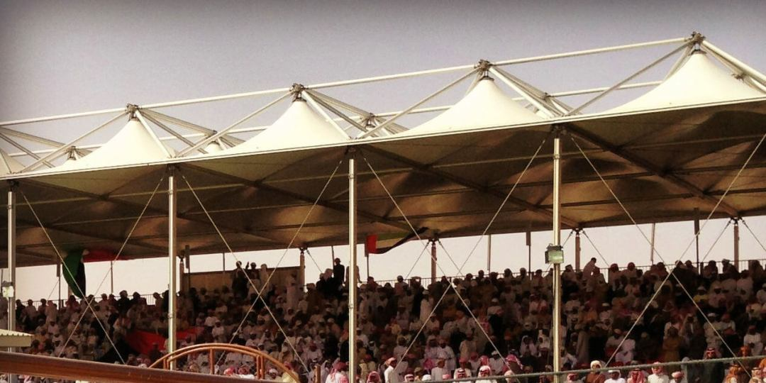 The crowds cheering their favourites on at the Al Dhafra Festival in Western Region, Abu Dhabi