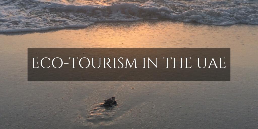 UAE Eco tourism