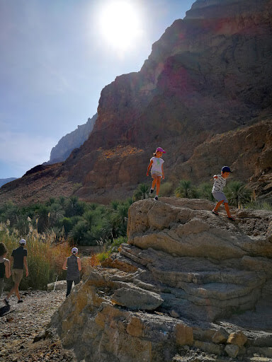 Wadi's in Oman are one of the nature highlights