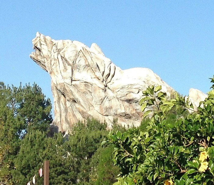 Disney California Adventure Top 10