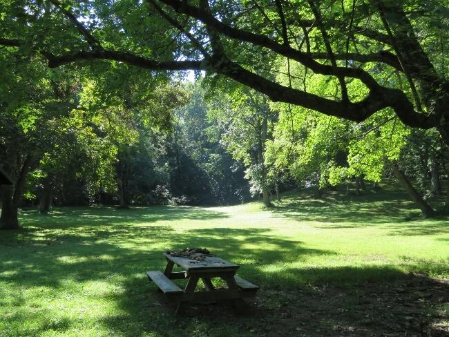 Bernheim Forest