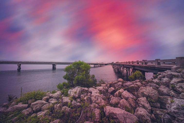 Amelia Island, Florida; Photo Courtesy of PETER LAKOMY/Shutterstock.com