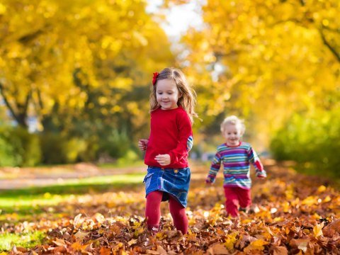 Kids Playing in Fall Leaves; Courtesy of FamVeld/Shutterstock.com