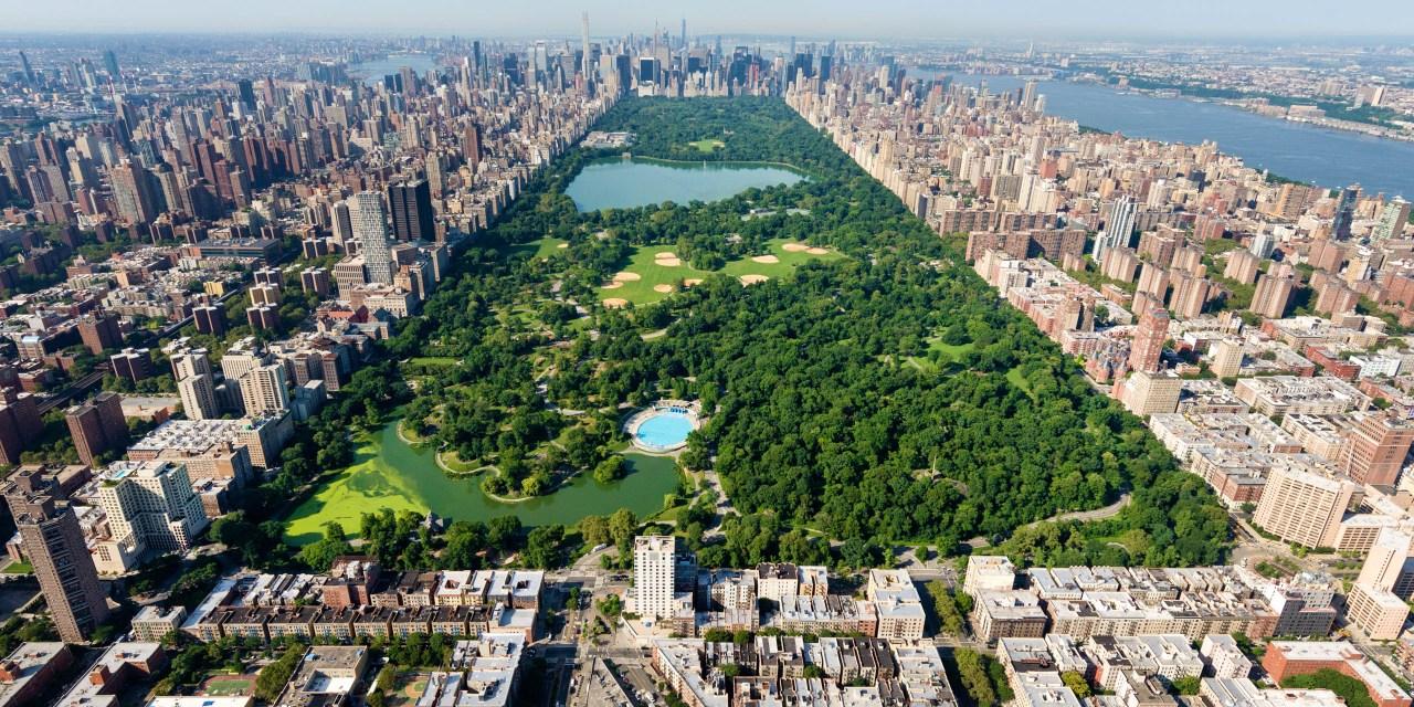 New York City Family Vacation