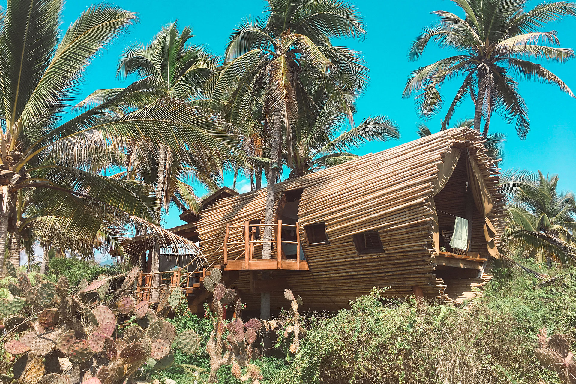 Playa Viva Treehouse; Courtesy of Glamping Hub and Louise Claire Johnson