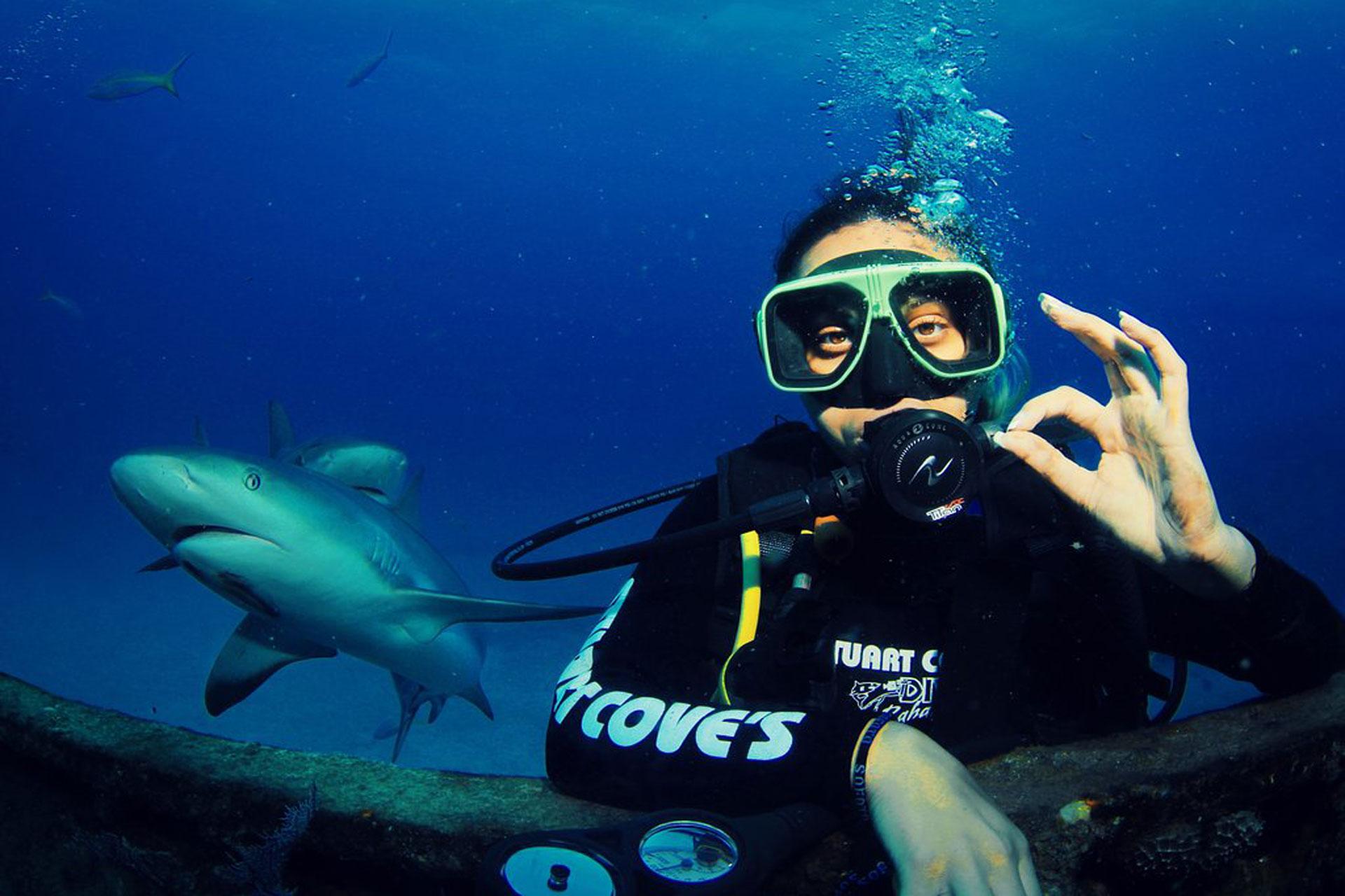 Stuart Cove's Dive in Bahamas; Courtesy of Travelver Photo Alicia C/TripAdvisor.com