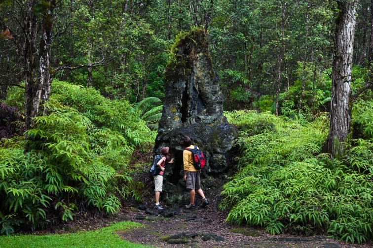 Lava Tree State Park in Hawaii; Courtesy of Hawaii Tourism Authority