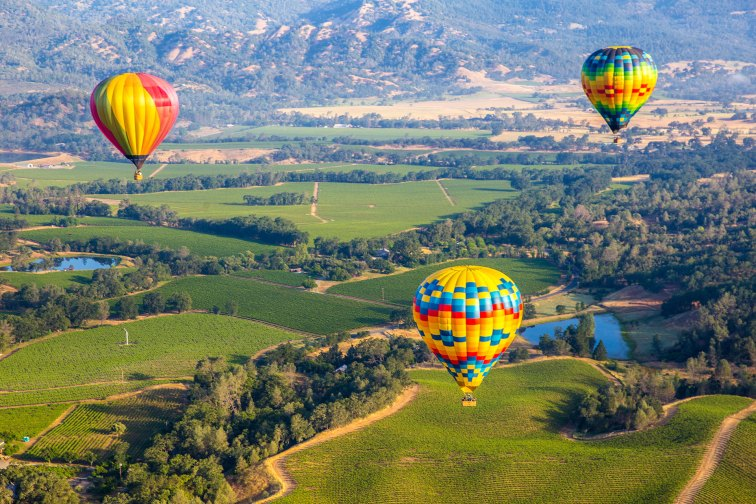 Napa Valley, California; Courtesy of cheng/chengShutterstock.com