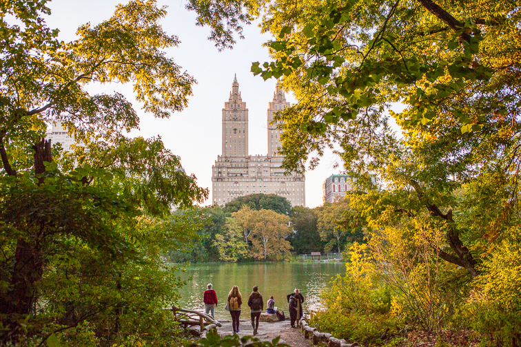 Bird-Watching in Central Park ;Courtesy of NYC & Company