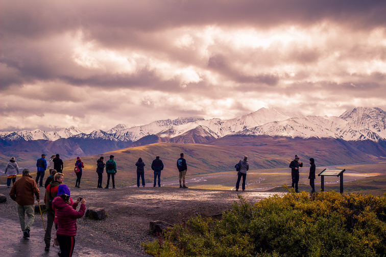 Touring Denali National Park; Courtesy of Amanda Wayne/Shutterstock