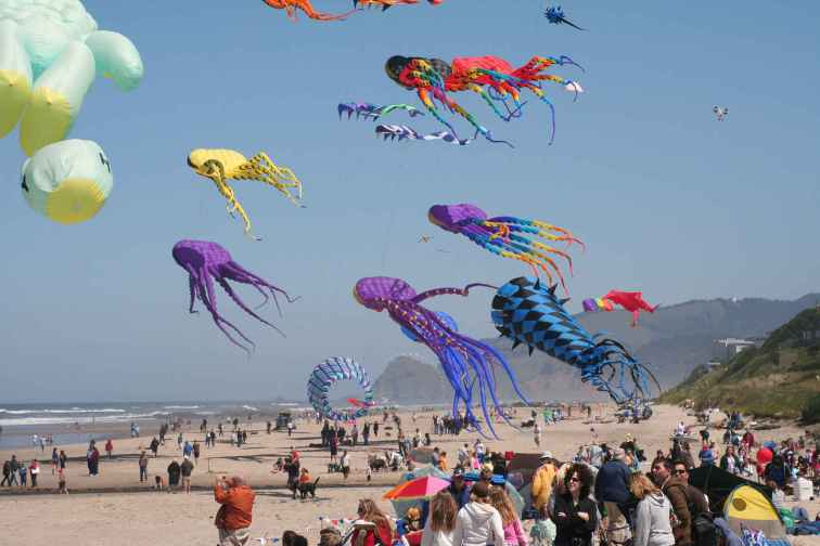 Kites at Lincoln City Fall Kite Festival in Lincoln City, Oregon