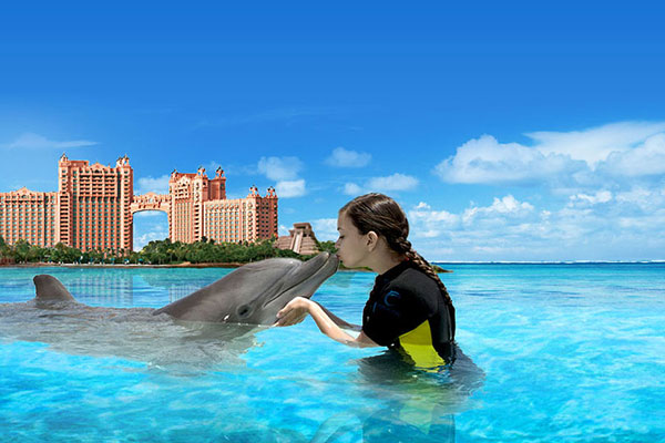 Swim With Dolphins 10 Kid Friendly Dolphin Experiences Family Vacation Critic