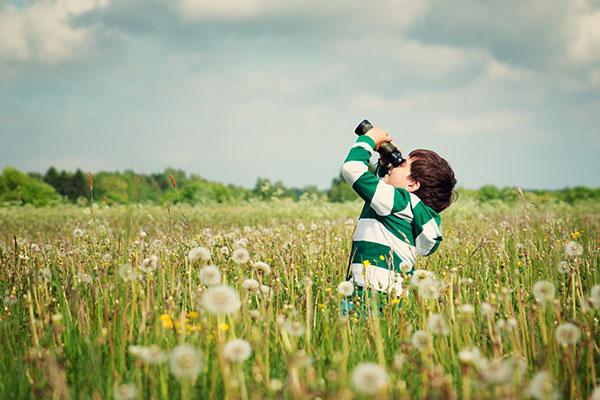 Boy looking through binoculars in a field of dandelions.
