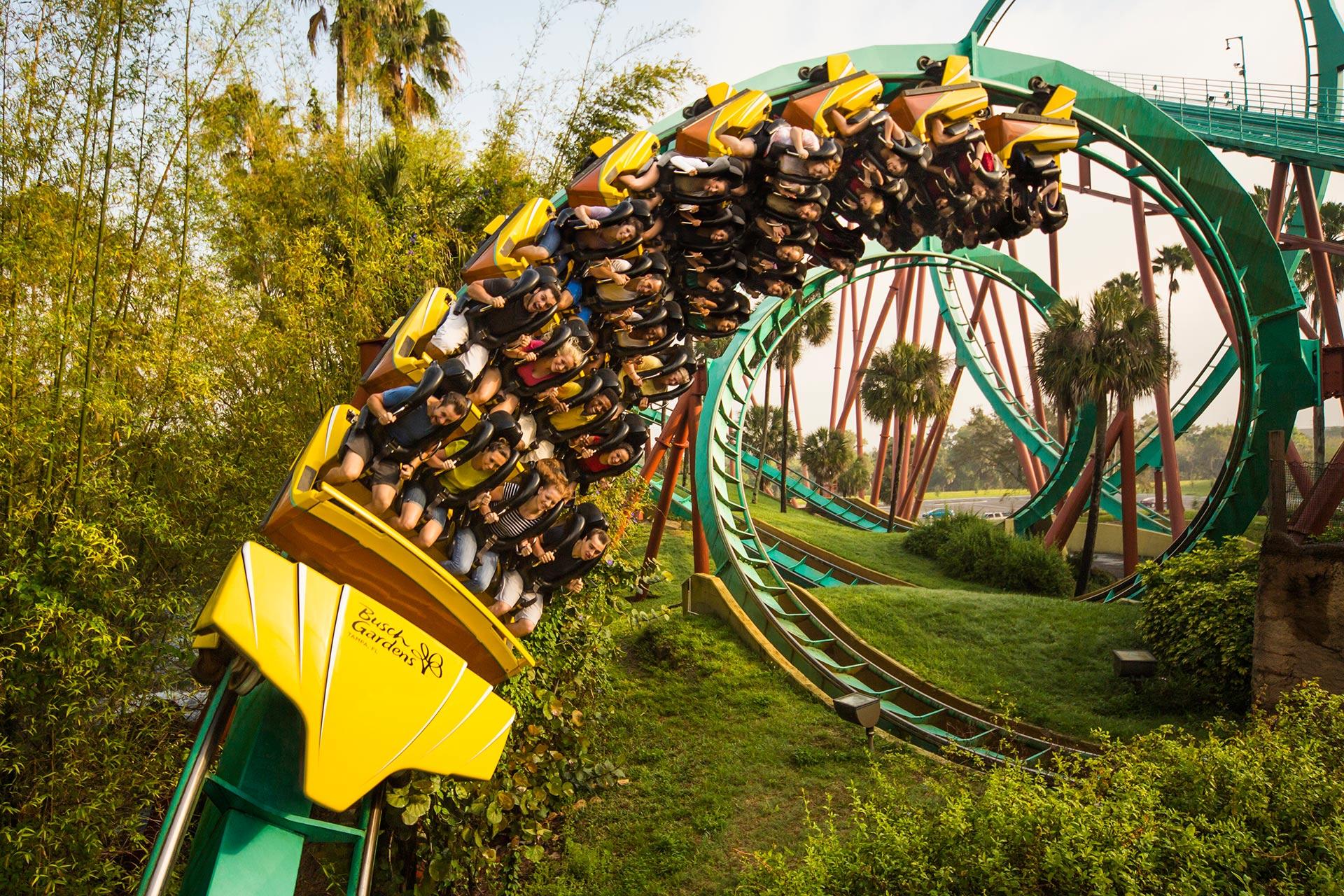 A ride at Busch Gardens Tampa Bay.