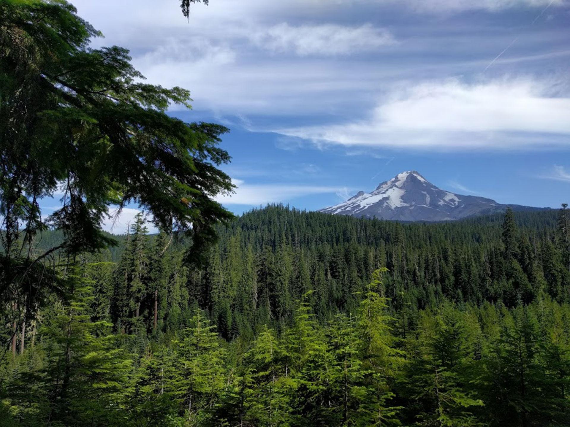 View of Mount Hood