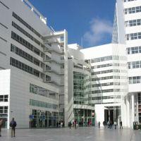 The Hague City Hall