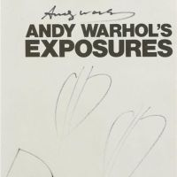 Andy Warhol Painter - Biography, Facts and Paintings