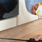 Benefits of hiring a professional pest control company in Baltimore