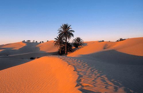 picture_of_Tunisia_desert